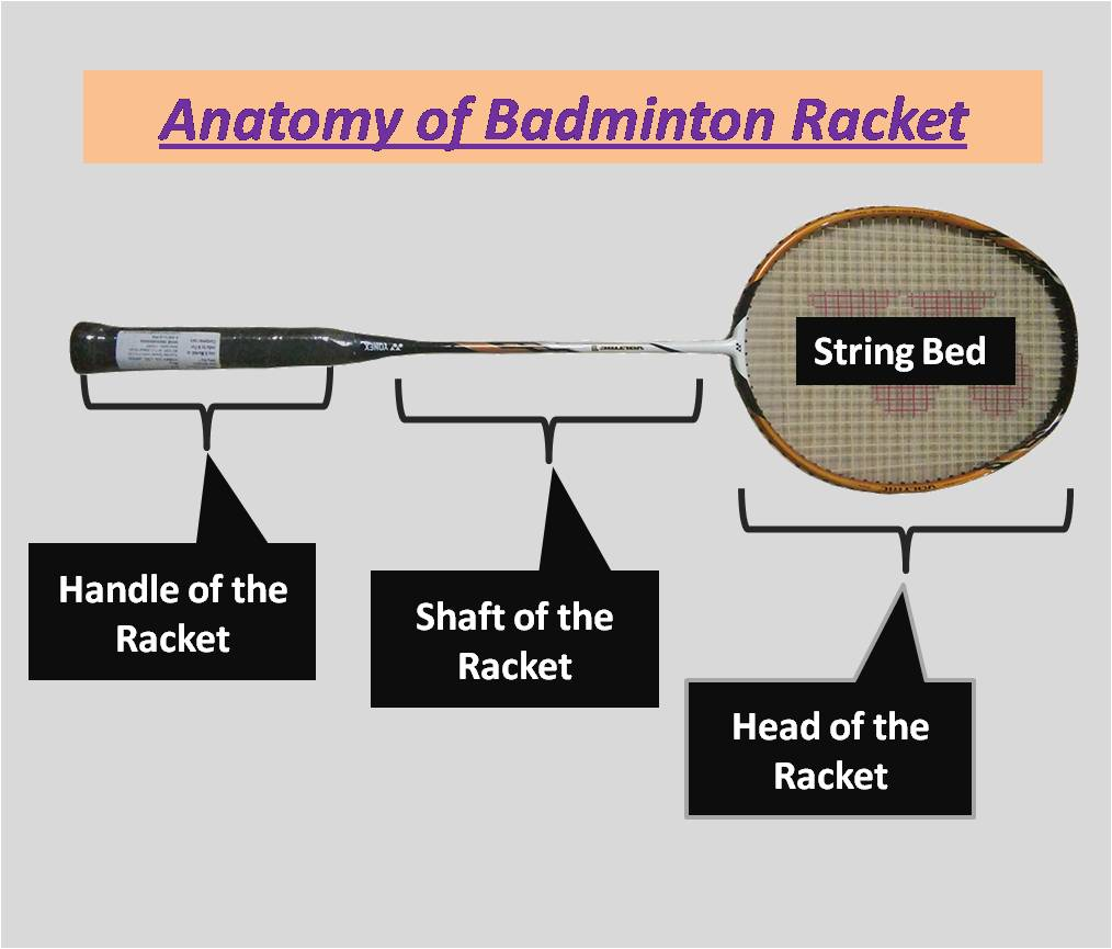 Anatomy of Badminton Racket