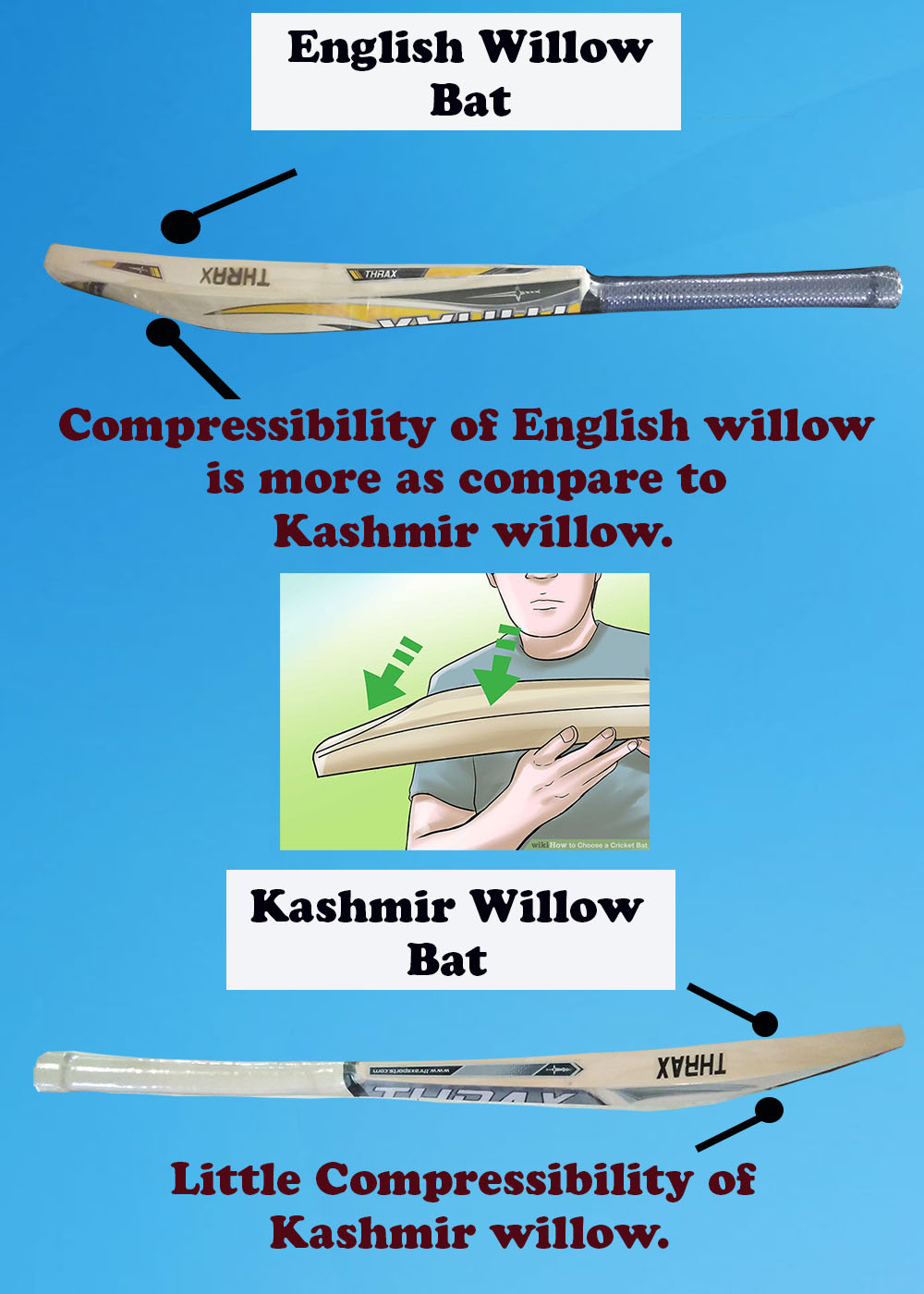 English Willow Offers Better Compressibility thus it gives better ping