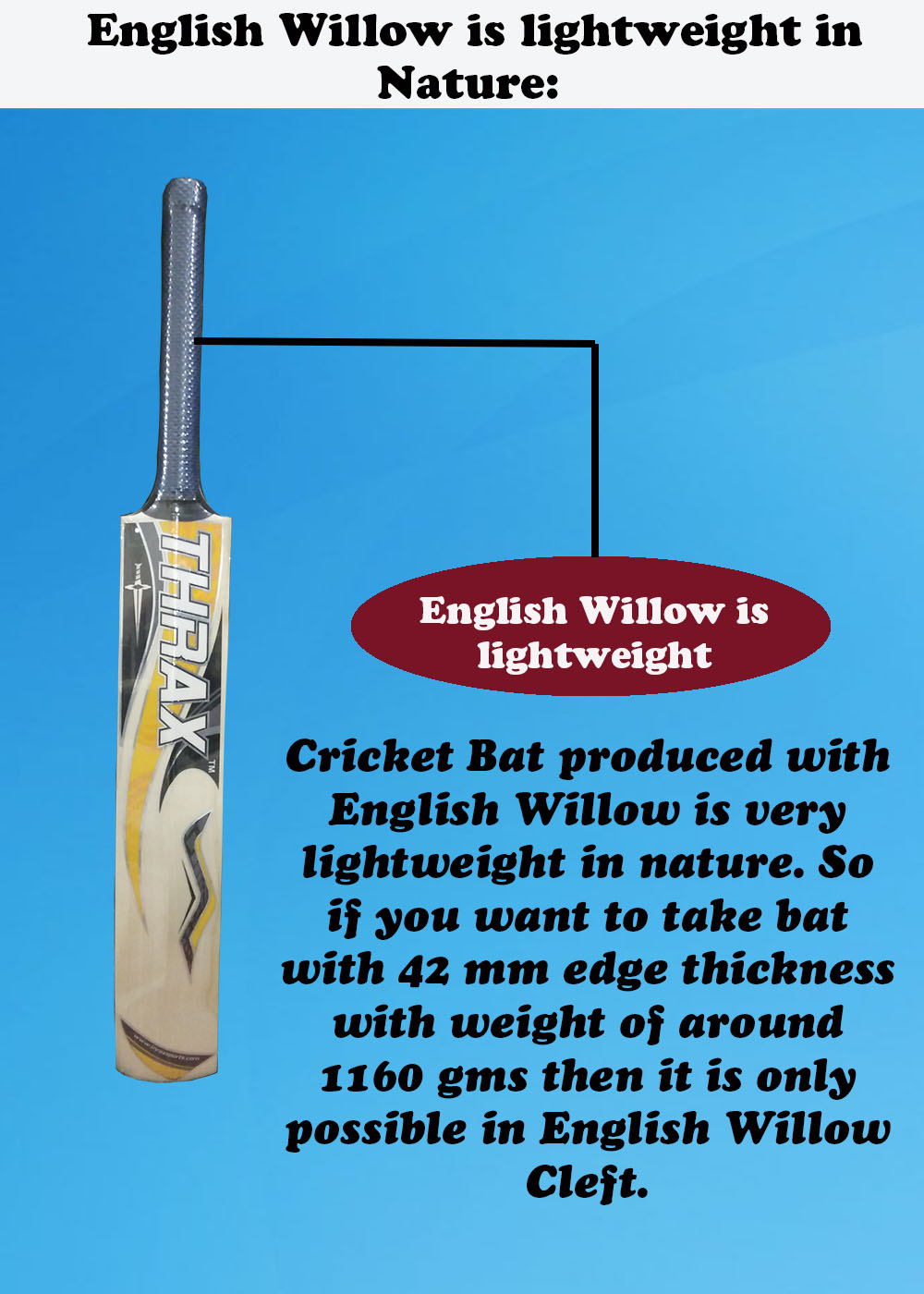 English Willow is lightweight in Nature