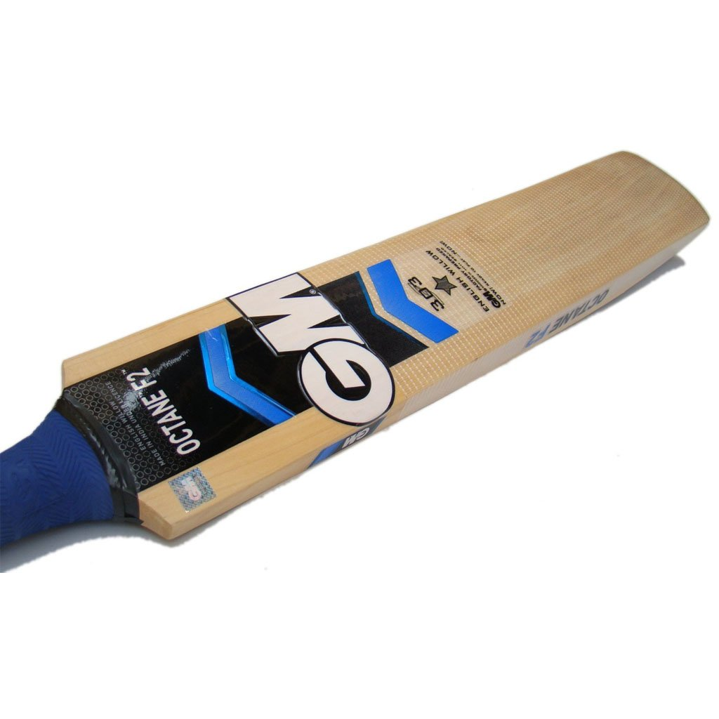 GM Octane F2 303 English Willow Cricket Bat Standard Size ...