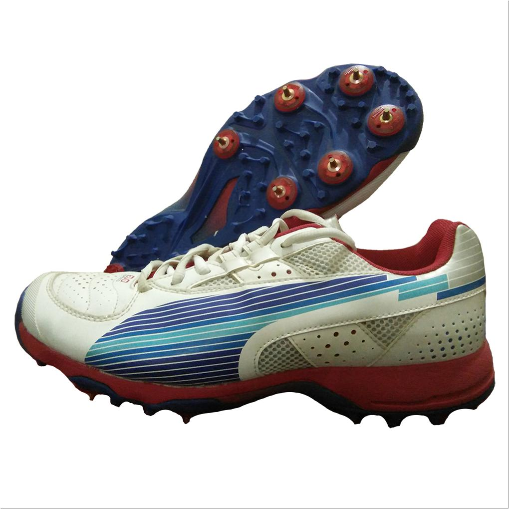 23dbf96694b Puma Evo Speed Full Spike Cricket Shoes White Blue and Red