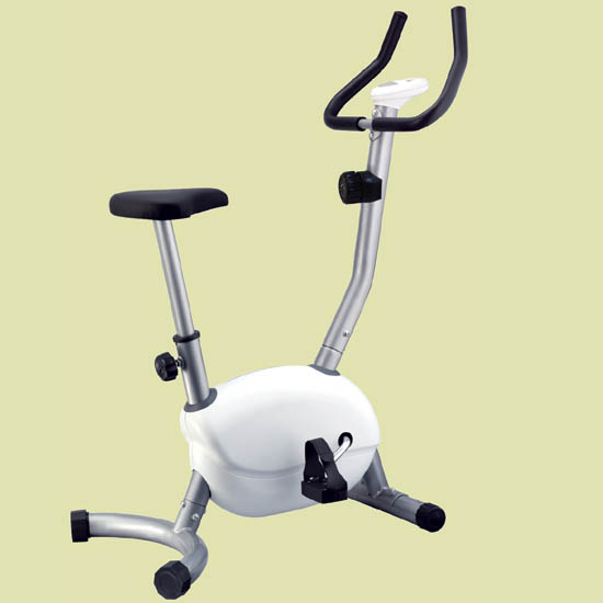 Cosco Magnetic Exercise Bike  CEB TRIM 222 D