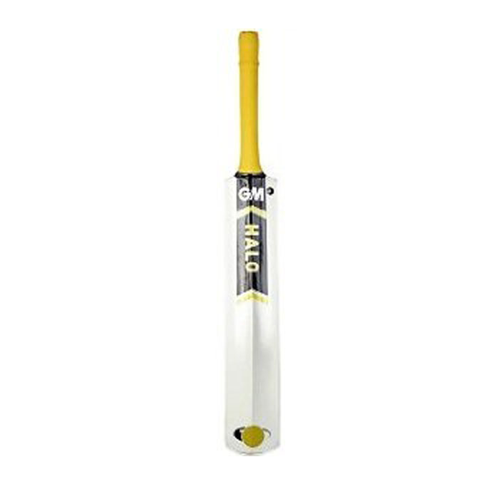 GM Halo Sting Kashmir Willow Cricket Bat