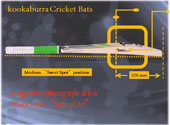 kookaburra Bat technology