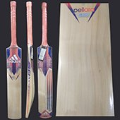 Adidas Pellara Club Kashmir Willow Cricket Bat