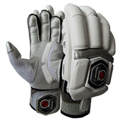 AJ Prestige Cricket Batting Gloves