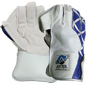 Aver Catch It Cricket Wicket Keeping Gloves