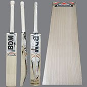 BDM Platinum English Willow Cricket Bat