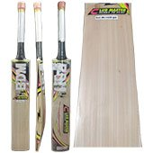 BDM Club Master Kashmir Willow Cricket Bat