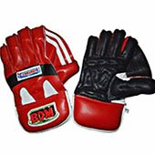 BDM Commander Cricket Wicket Keeping Gloves