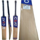 CEAT Pro R10 English Willow Cricket Bat