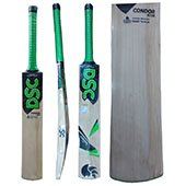 DSC Condor Scud Kashmir Willow Cricket Bat