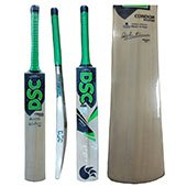 DSC Condor Aviator Kashmir Willow Cricket Bat