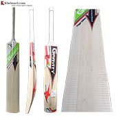 Gravity Player Edition Kashmir Willow Cricket Bat