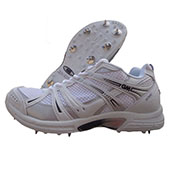 GM Multi function Octane Cricket Shoes full Spikes