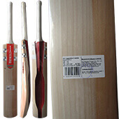 Gray Nicolls Scoop XVI English Willow Cricket Bat