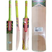 Gray Nicolls Powerbow GN2 Select Willow Cricket Bat