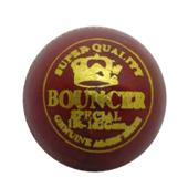 Gravity Cricket Ball Bouncer 6 Balls