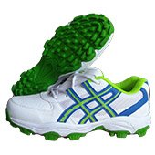 Hi Speed Stud Cricket Shoes White Blue and Green