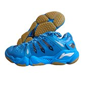 Li Ning AYAH 009 Professional Badminton Shoes Blue