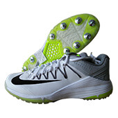 Nike Domain 2 Spike Cricket Shoes White and Grey