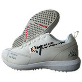 Payntr Stud Cricket Shoes