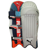 Puma Evo 1 Cricket Batting Leg Guard