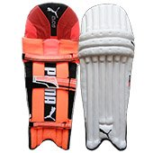 Puma Evo 6 Cricket Batting Leg Guard