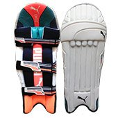 Puma Evo 2 Cricket Batting Leg Guard