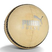 Puma Pulse White LB Cricket Ball