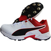 Puma Spike 19.1 Cricket Shoes White Black Red