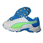 Puma 19.2 Spike Cricket Shoes Puma White Nrgy Blue Green