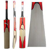 Puma EvoSpeed 2.17 English Willow Cricket Bat