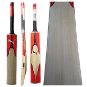 Puma EvoSpeed 4.17 English Willow Cricket Bat
