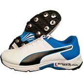Puma Spike 19.2 Cricket Shoes White and Black