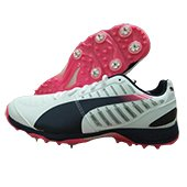 Puma Evo Speed Full Spike Cricket Shoes