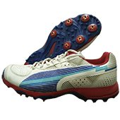 Puma Evo Speed Full Spike Cricket Shoes White Blue and Red