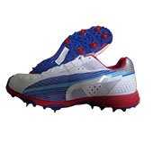 Puma Iridium II Spike Cricket Shoes