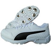 Puma EvoSpeed 18.1 C Spike Cricket Shoes White and Black