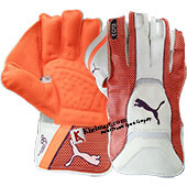 Puma Evo 2 Wicket Keeping Gloves