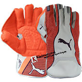 Puma Evo 3 Wicket Keeping Gloves White and Orange