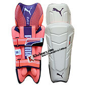 Puma Evo 2 Cricket Wicket Keeping Leg Guard