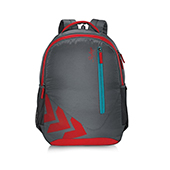 Skybags Pixel 02 Backpack Gray and Red