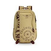 Skybags Raider 02 Brown Backpack
