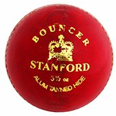 SF Bouncer Cricket Ball 12 Ball Set