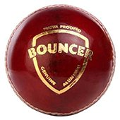 SG Bouncer Cricket Ball 3 Ball set
