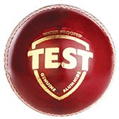 SG Test Cricket Ball 24 Ball set