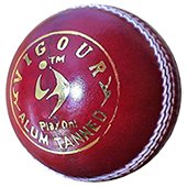 SM Vigour Alum Tanned Cricket Leather Balls 12 Ball Set