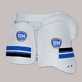 SM LE Thigh Guards