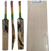 Spartan Chris Gayle Thunder Cricket English Willow Cricket Bat